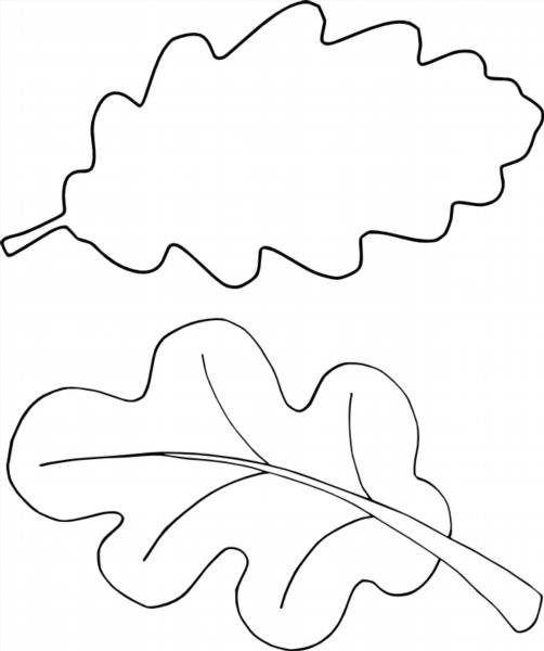 листья из бумаги шаблон